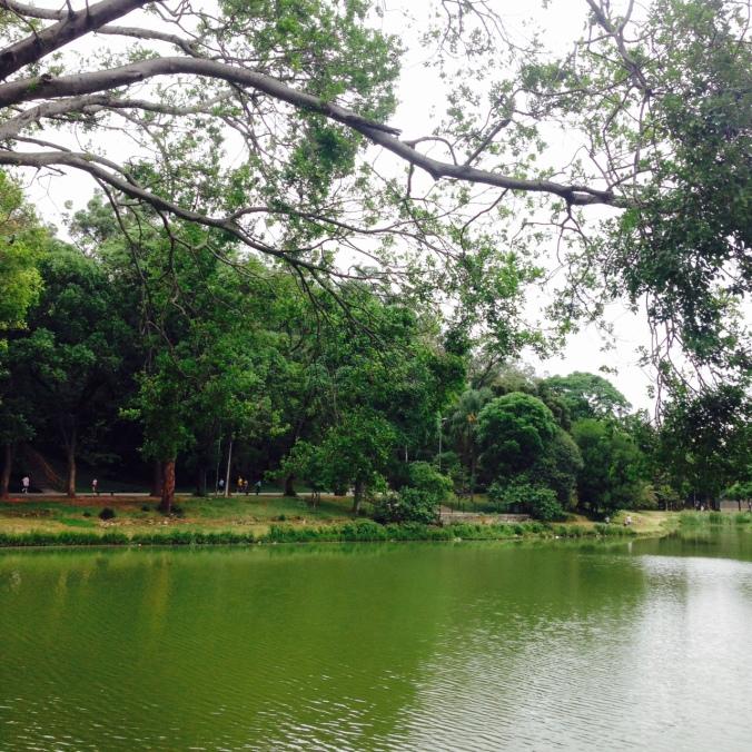 ParqueAclimacao